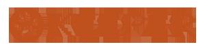 Dummyshopen Logo